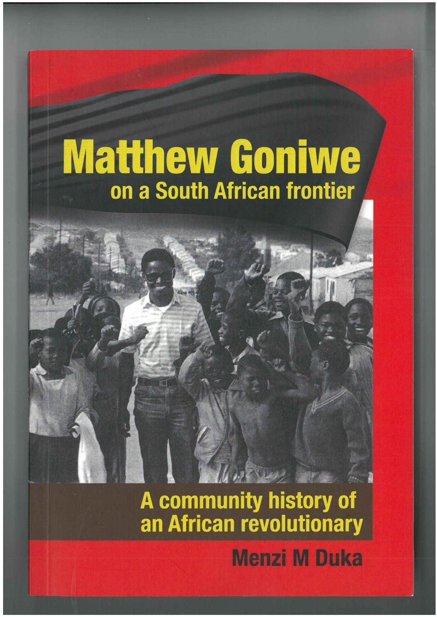 Image result for matthew goniwe